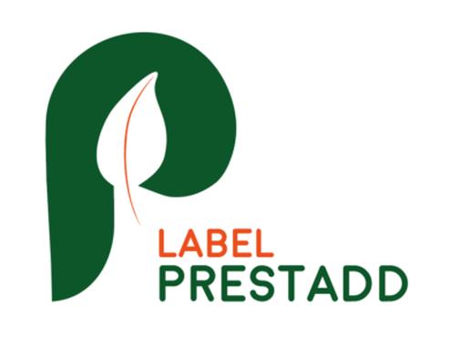 https___www.synpase.fr_wp-content_uploads_2018_04_Logo-Prestadd-400x308