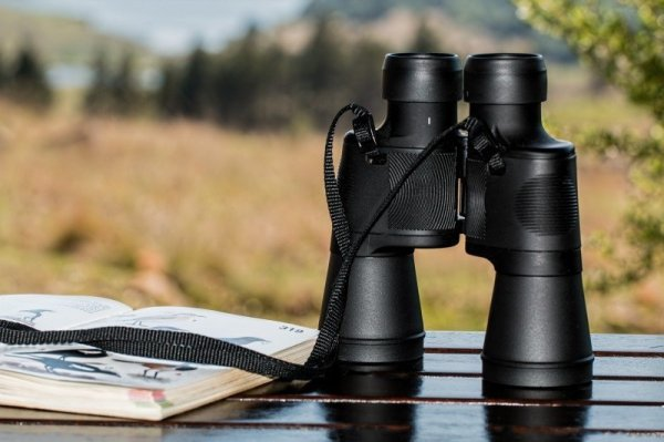 binoculars-birdwatching-spy-glass-spying-spy-watch